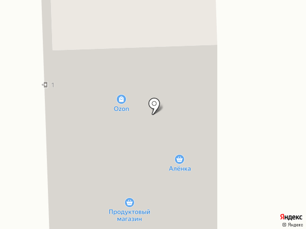 Алёнка на карте Тольятти