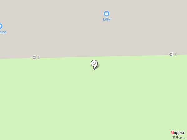 Шпилька на карте Кирова