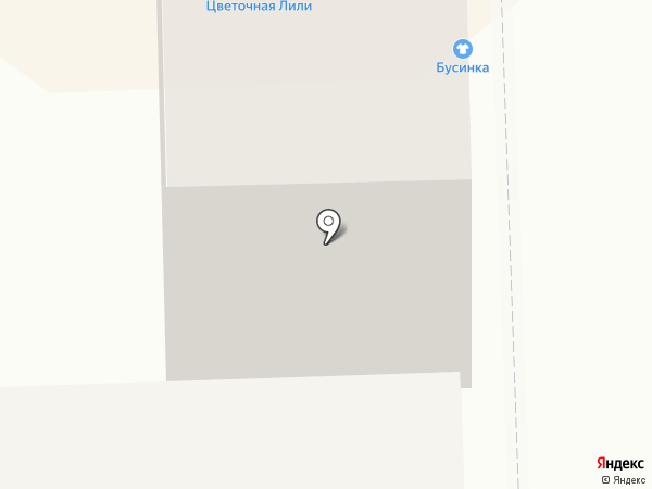Bravo Photo на карте Кирова