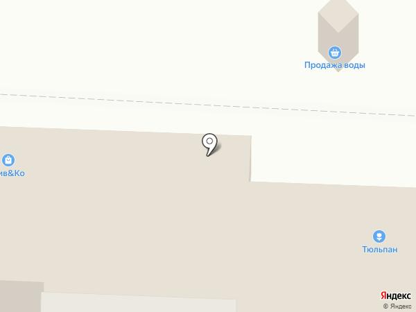 Тюльпан на карте Новокуйбышевска