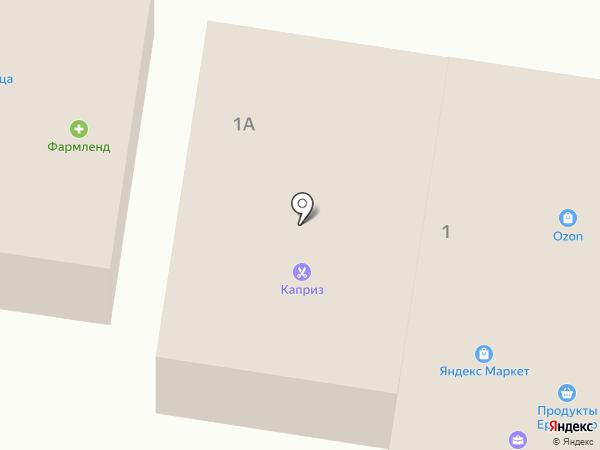 Салон цветов и ландшафтного дизайна на карте Красного Яра