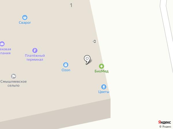 Магазин игрушек на карте Смышляевки