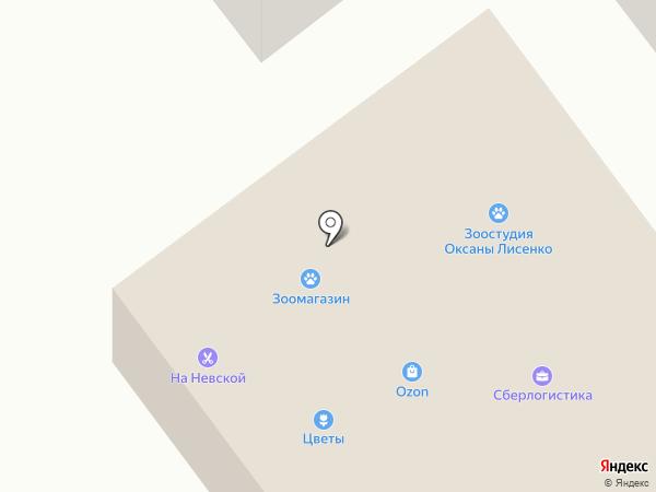 Шкатулка увлечений на карте Алексеевки