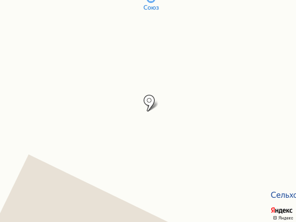Союз на карте Выльгорта