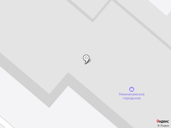Борок на карте Нижнекамска