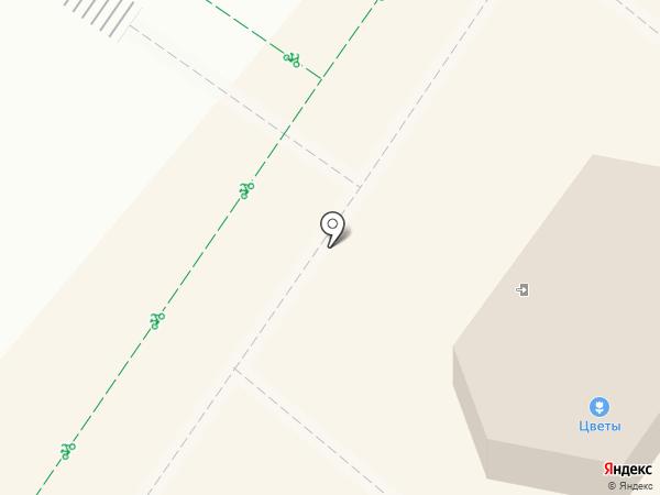 Сеть цветочных салонов на карте Нижнекамска