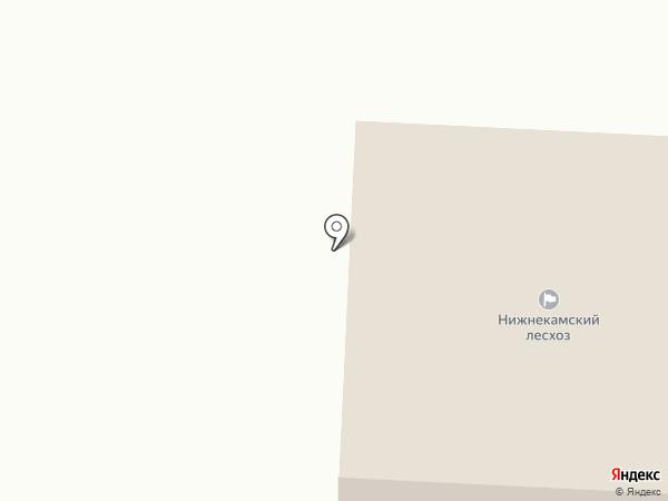 Нижнекамский лесхоз, ГБУ на карте Красного Ключа