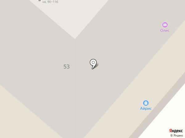 Олис на карте Нижнекамска