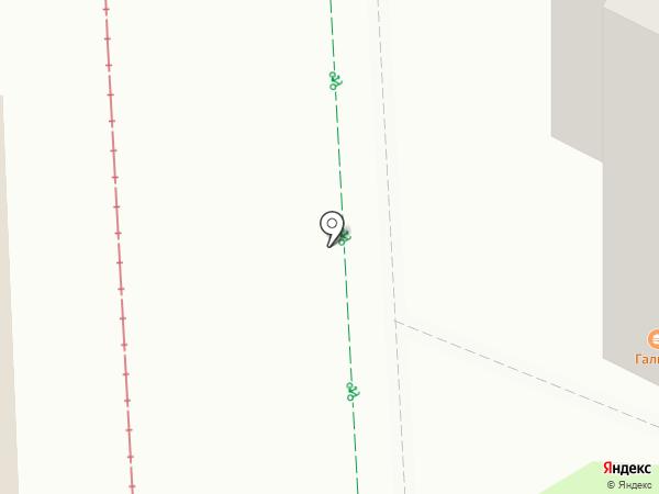 Галина на карте Нижнекамска