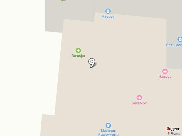 Бегемот на карте Нижнекамска