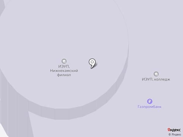 ИЭУиП, Институт экономики на карте Нижнекамска