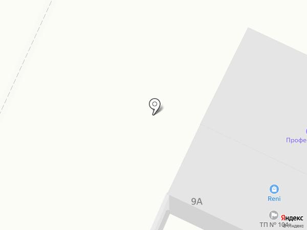 Профессионалъ на карте Нижнекамска