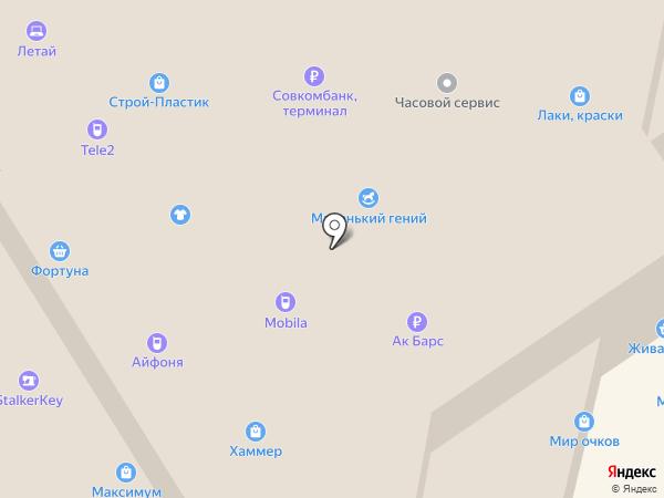 Магазин посуды на карте Елабуги