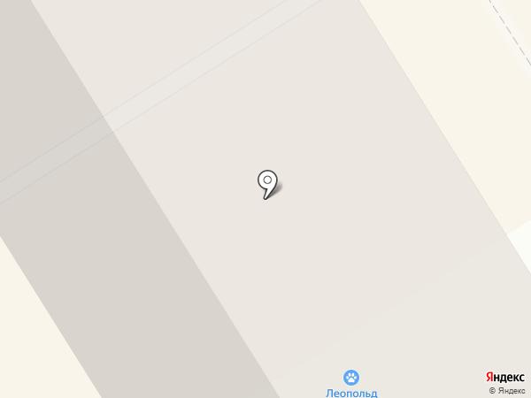 Леопольд на карте Елабуги