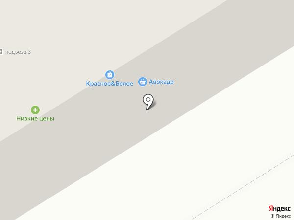 Авиценна на карте Елабуги
