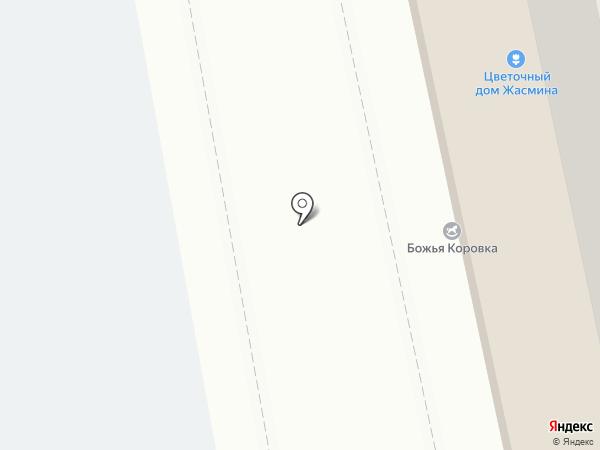 Доктор Айболит на карте Набережных Челнов