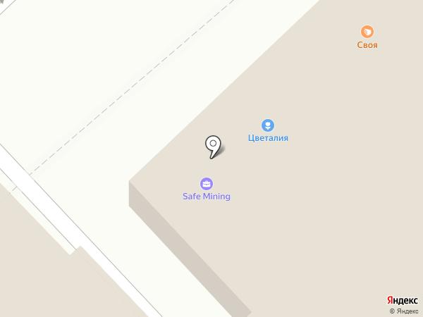 Своя ЕДА на карте Набережных Челнов