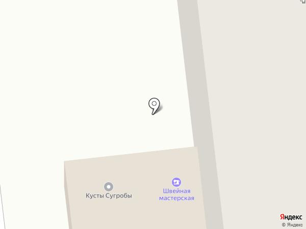 MITSU.PRO на карте Ижевска
