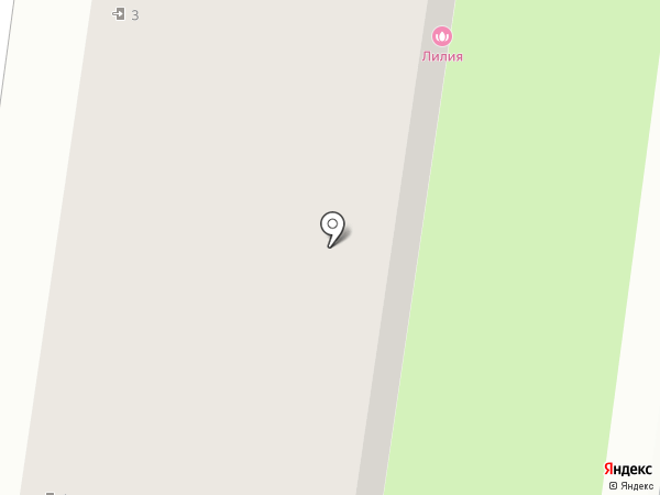 Лилия на карте Октябрьского