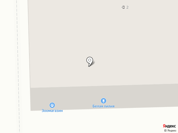 Белая Лилия на карте Салавата