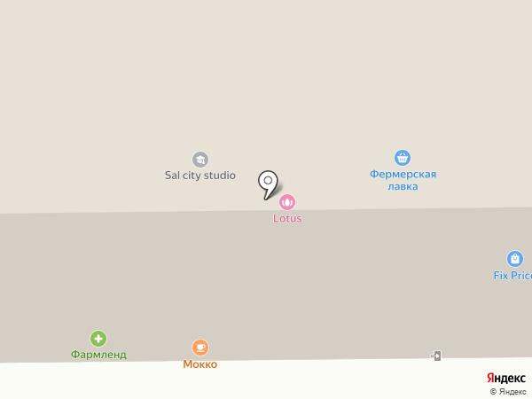 Планета Здоровья Ортикон на карте Салавата