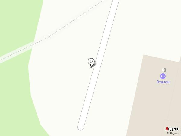 Bum-ball на карте Перми