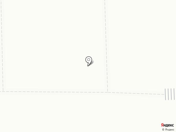 Золотая курочка на карте Салавата