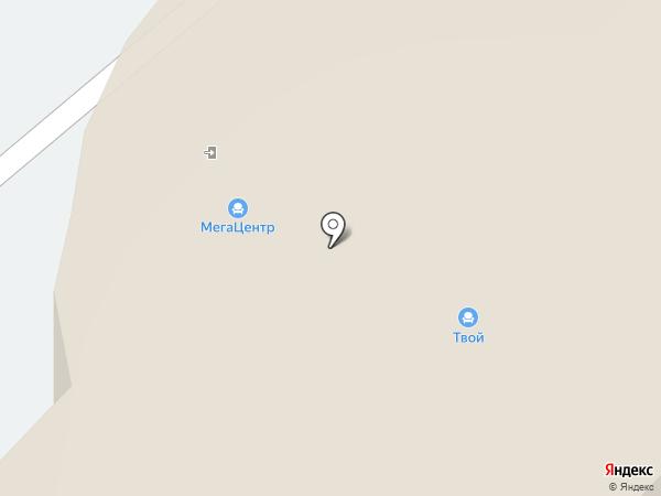 Хамелеон на карте Перми