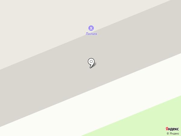 Лунный кот на карте Перми