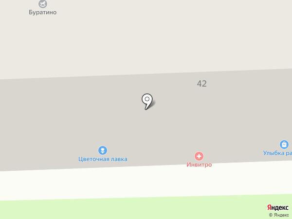 Глазовская птица на карте Перми