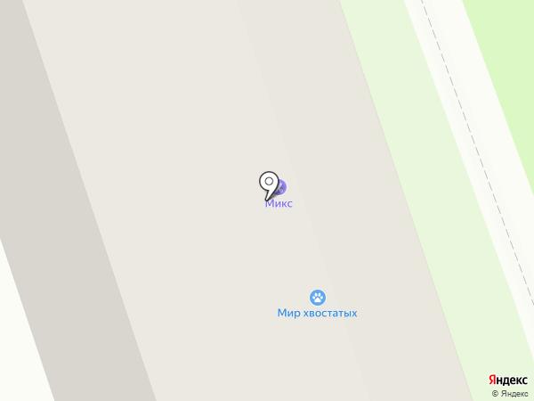 Мир хвостатых на карте Перми