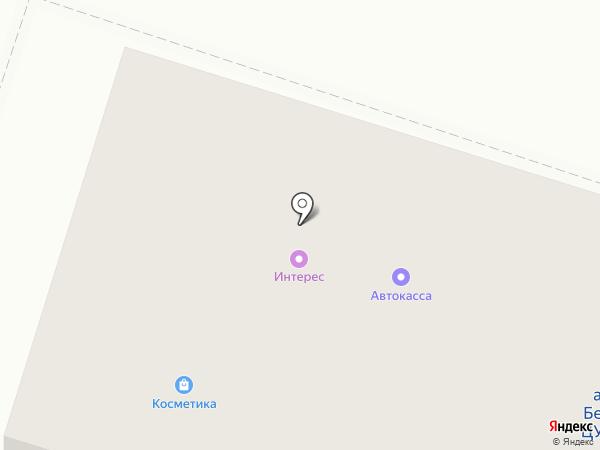 Птица на карте Березников