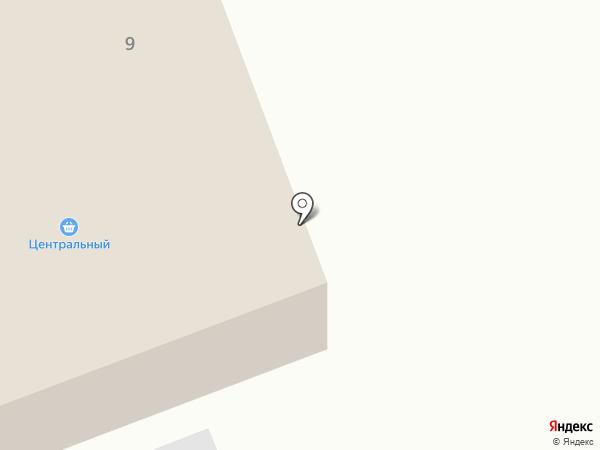 Центральный на карте Наровчатки