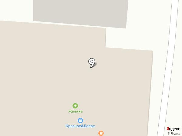 Ромашка на карте Златоуста