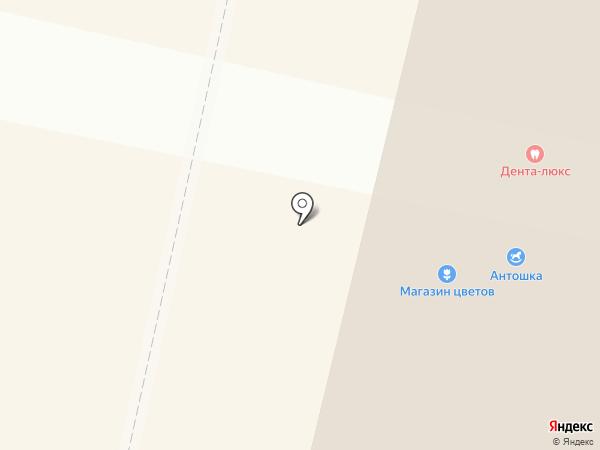 Антошка на карте Ревды