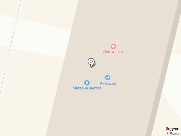 Дента люкс на карте Ревды
