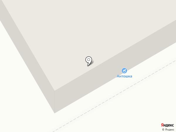 Антошка на карте Нижнего Тагила