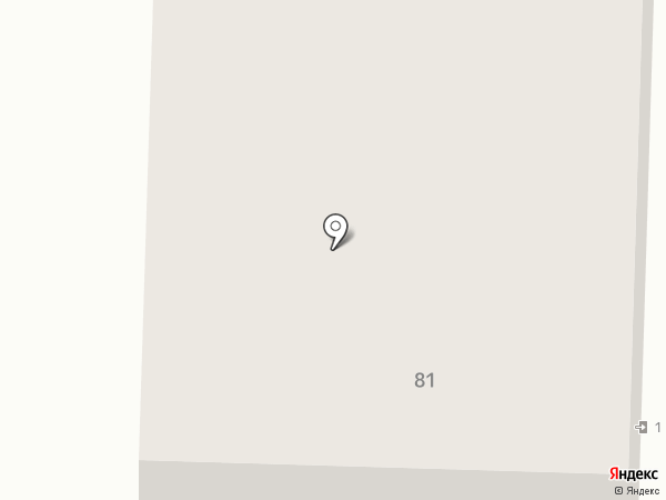 Консул СТ на карте Нижнего Тагила