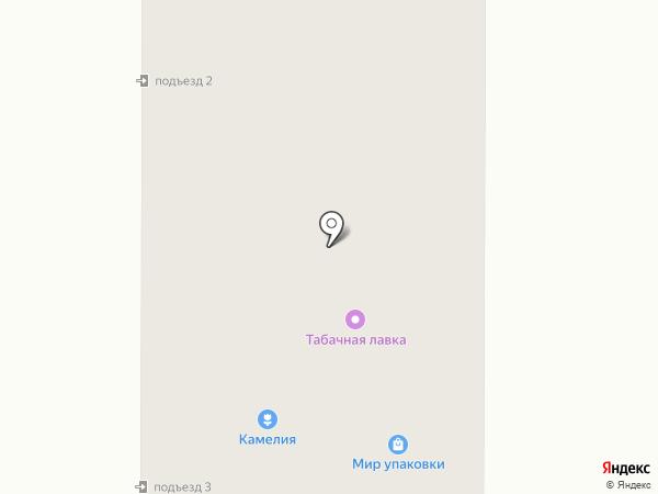 Олеся на карте Миасса