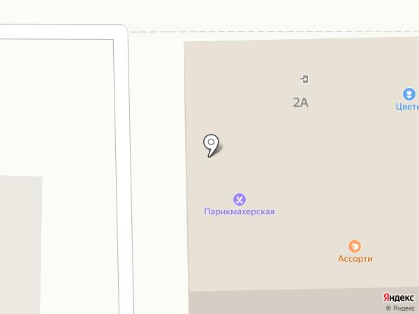 ВИЖИНАРД на карте Миасса