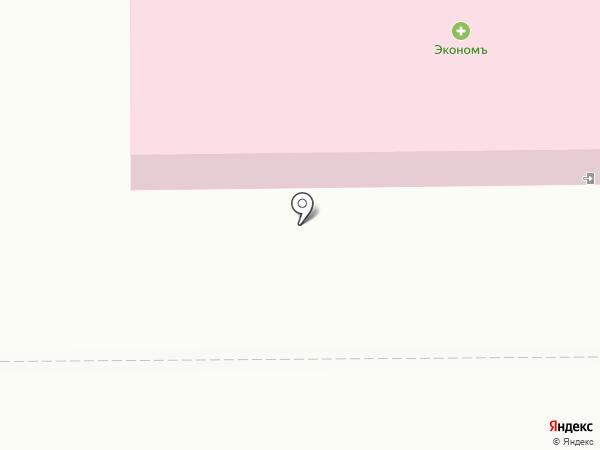 Чебаркульская птица на карте Миасса
