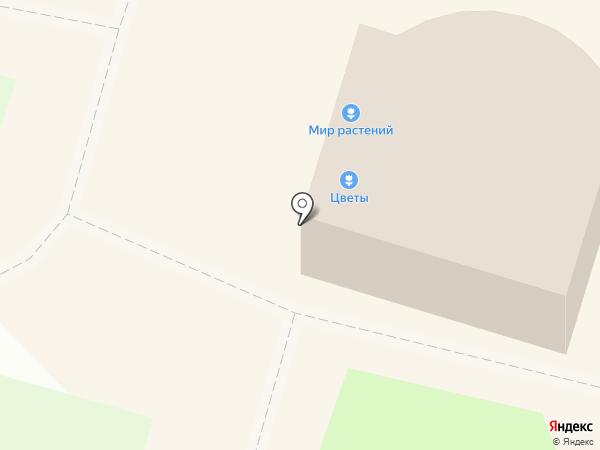 Аккорд на карте Миасса