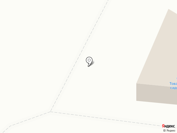 Максимус на карте Миасса