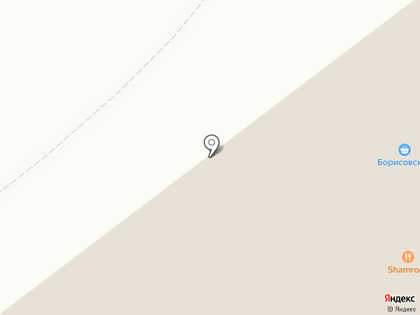 Борисовский на карте Екатеринбурга