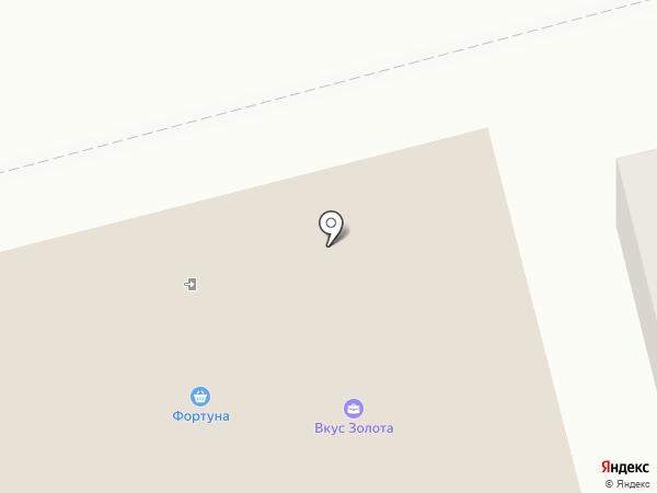 ФильтрМашСервис на карте Арамиля