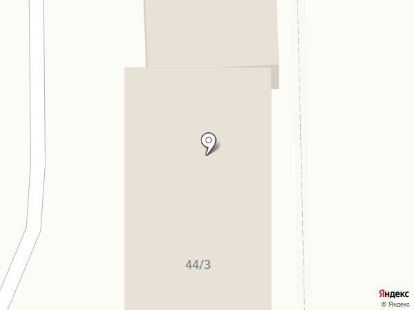 Муравей на карте Челябинска