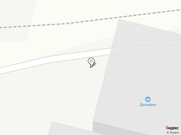 Дельфин на карте Каменска-Уральского