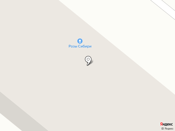 Табыш на карте Тюмени