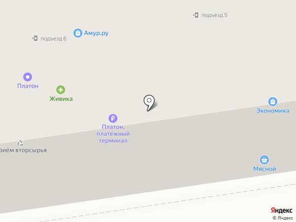 Мясной магазин на карте Кургана