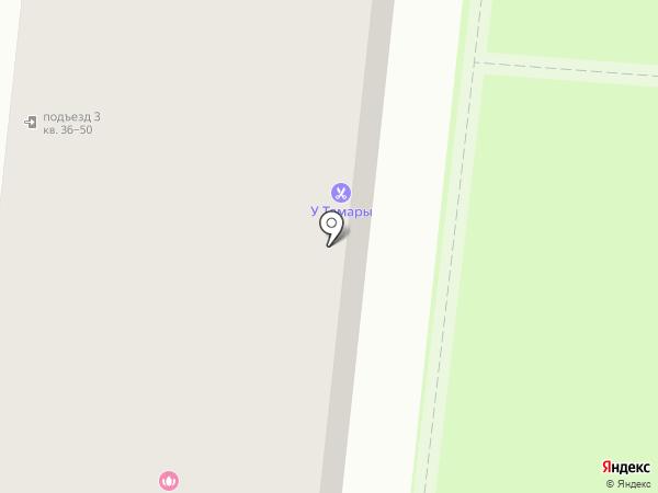 Пион на карте Тюмени